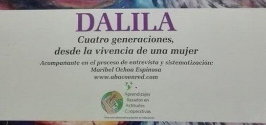 DalilaportPIM